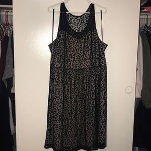 Leopard lace dress